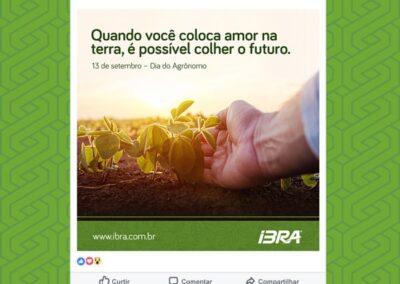 IBRA_Redes-Sociais3